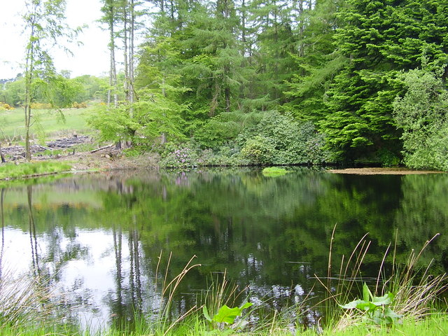 Pond in grounds of Knockdow House