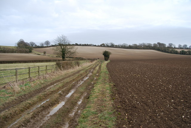 Footpath leading NE from Priors Dean
