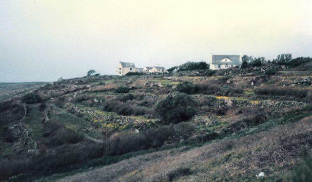 Farmland at Tregiffian