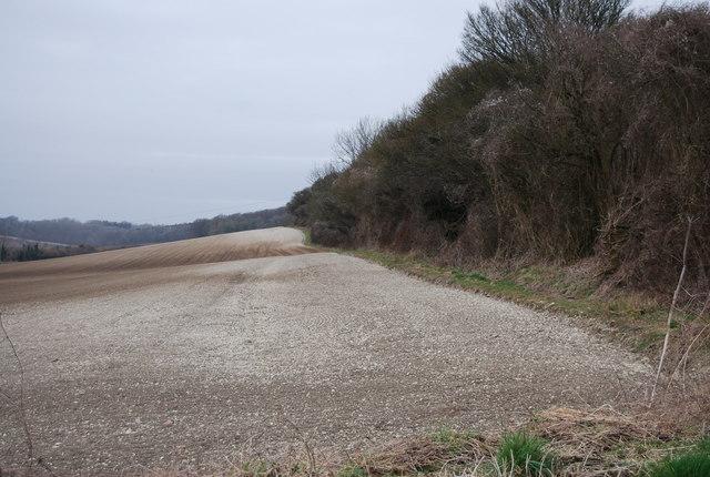 The edge of a field near Priors Dean