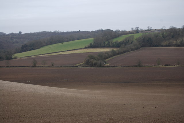 Rolling Chalk Downland scenery near Priors Dean