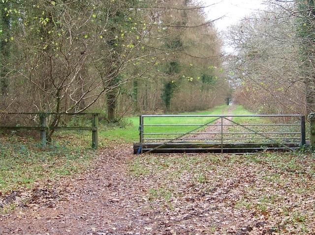 Gated bridleway, Great Ridge