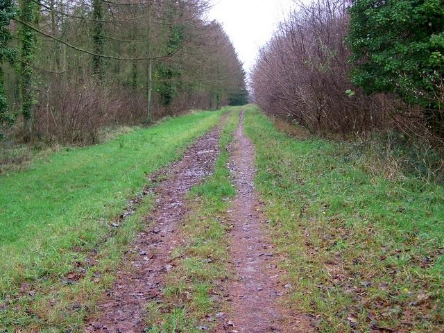 Bridleway, Great Ridge