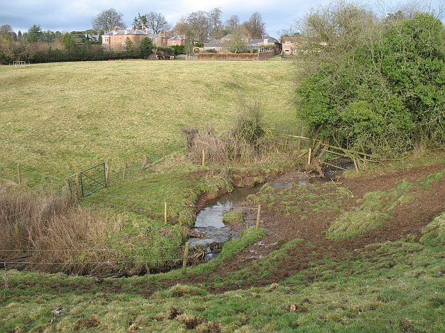 Cattle drinking spot, Dumblehole Brook