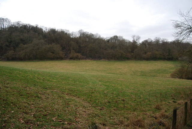 Field at the base of Hawkley Hanger
