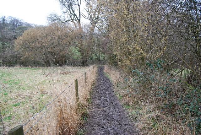 A muddy Hangers Way, Hawkley Hanger
