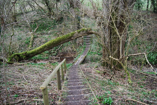 Steps down to a stream on the Hangers Way