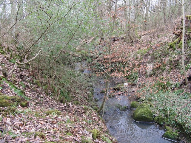 Small stream at Lymphoy