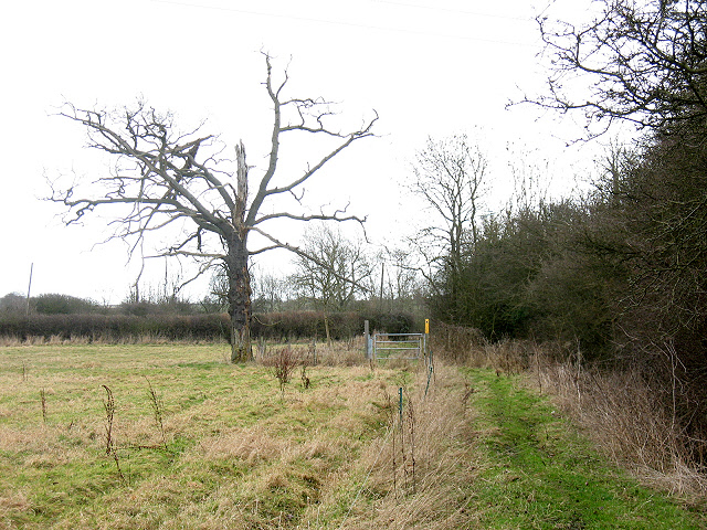 Footpath parallel to the A428