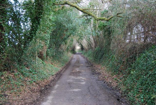 Lane West of Empshott Green