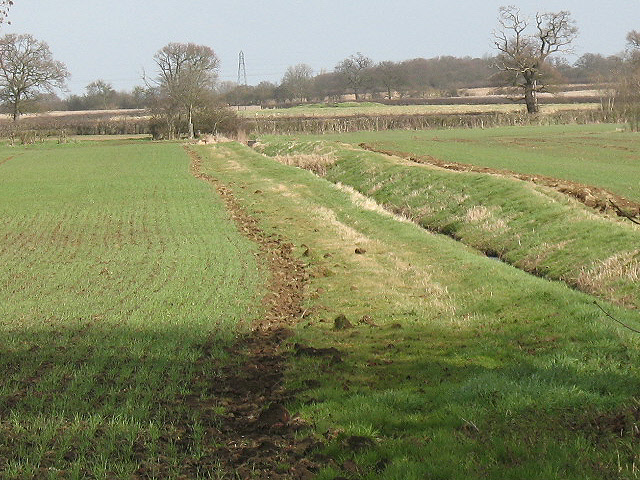 Drainage ditch near Priory Farm