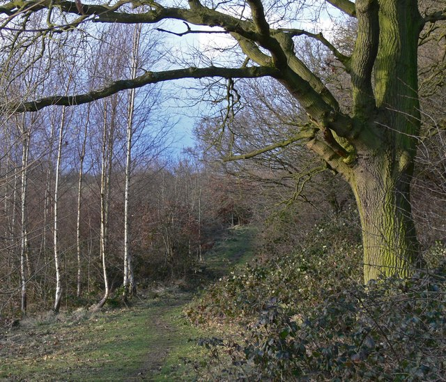 Footpath in the Ratby Burroughs