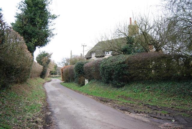 Lane through Empshott Green