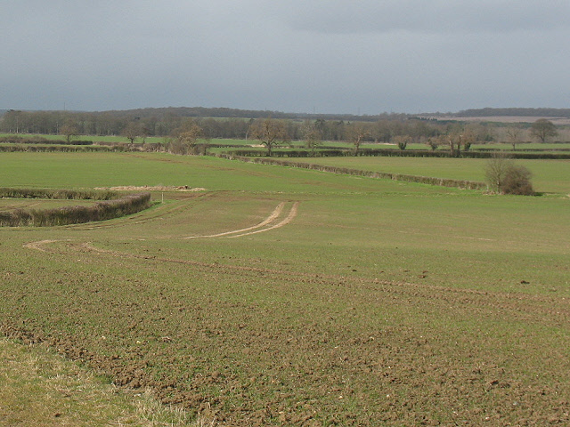 Arable land east of the Great Ouse