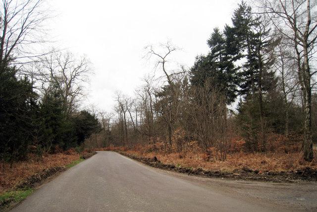 Gravel Hill Road