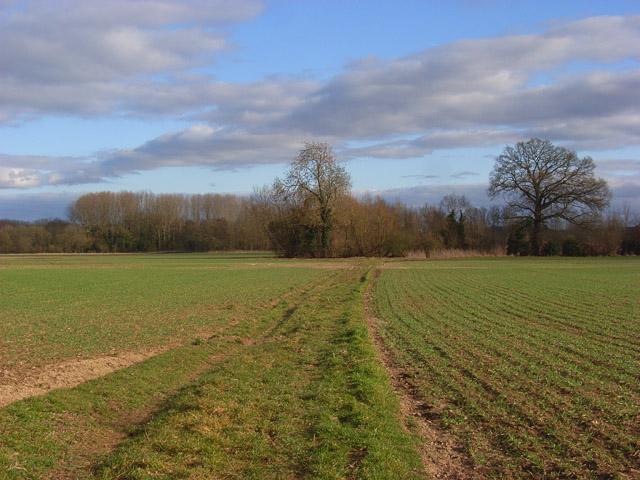 Farmland, Woolhampton
