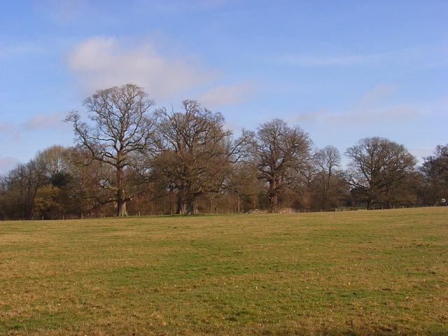 Pastures, Woolhampton