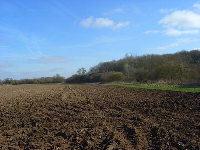Farmland, Crookham