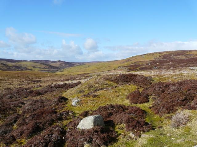 Moorland above Tressady