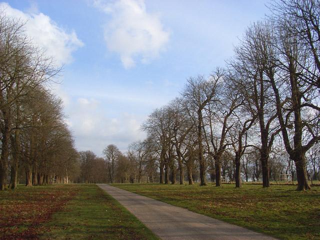 Avenue, Hamstead Park
