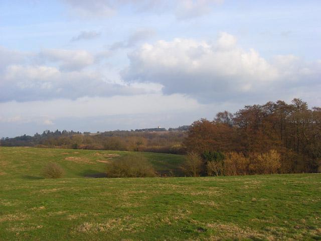 Pastures, Enborne