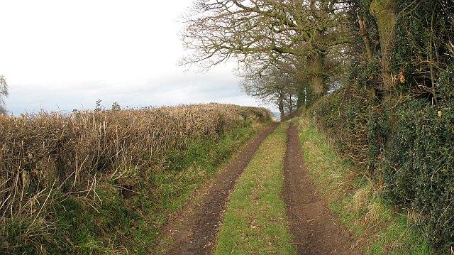 Barrett's Mill Lane
