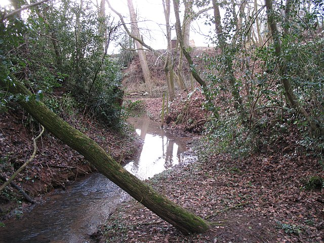 Dumblehole Brook