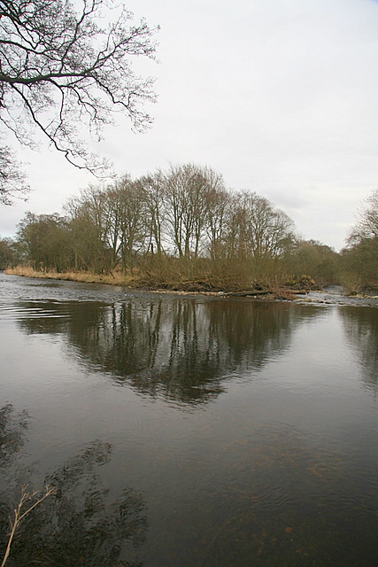 Island in the South Esk