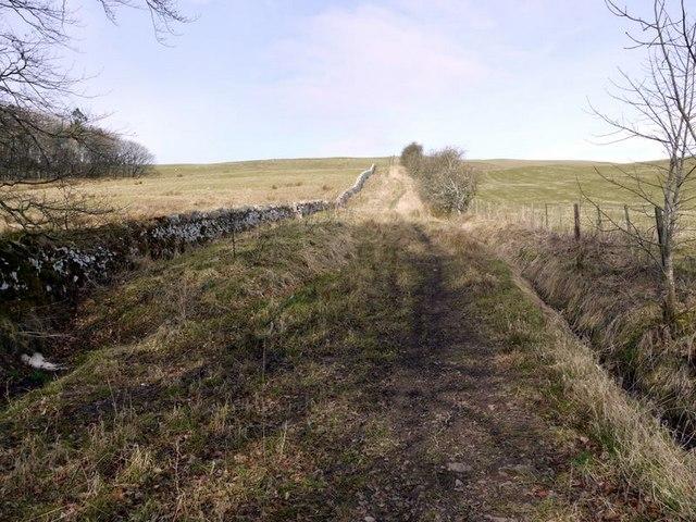 Salter's Road climbing Northfieldhead Hill