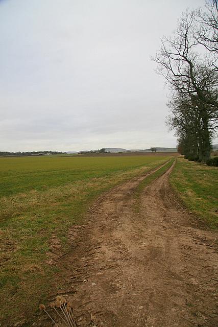 Track to Miltonbank farm