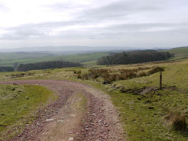 Bridleway junction below Northfieldhead Hill