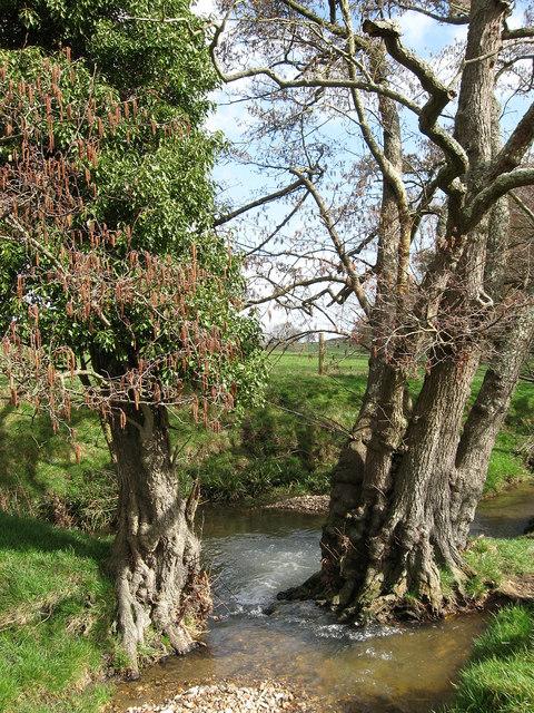 Unnamed Stream near Staplefields Farm