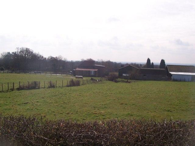 Merchant Farm