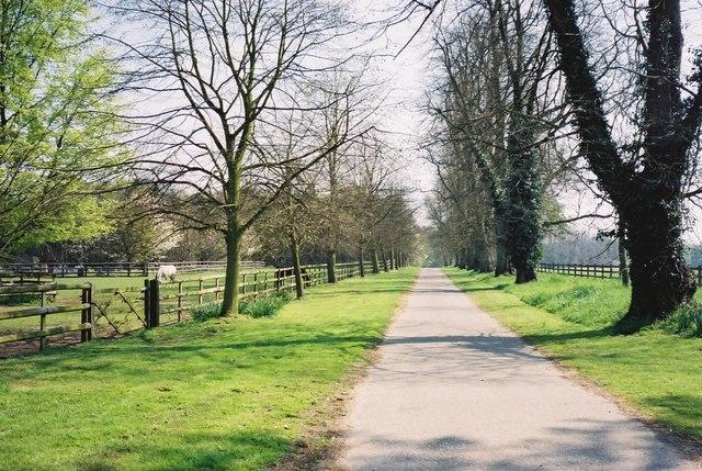 Driveway from Langham Church towards Dedham