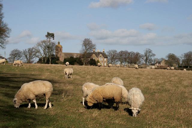 Farmland at Ladykirk