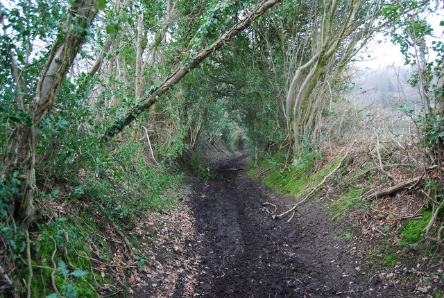 Muddy byway SE of Empshott Green