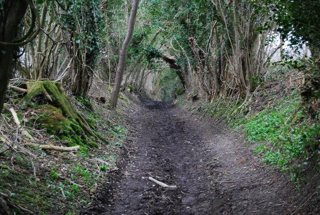 Muddy byway SE of Empshott Green (2)