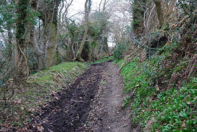 Muddy byway SE of Empshott Green (3)