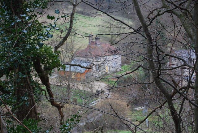 The Mill, Mill Lane, through the trees