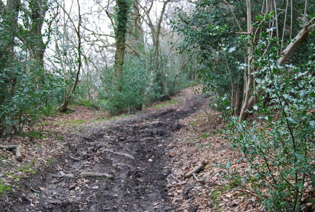 Muddy byway SE of Empshott Green (4)