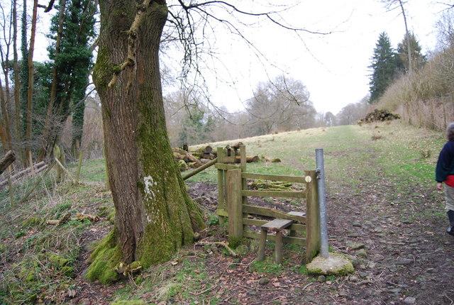 Stile East of Mill Lane