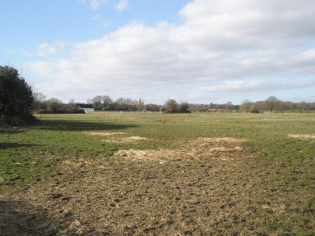Farmland north of Silverlock Place