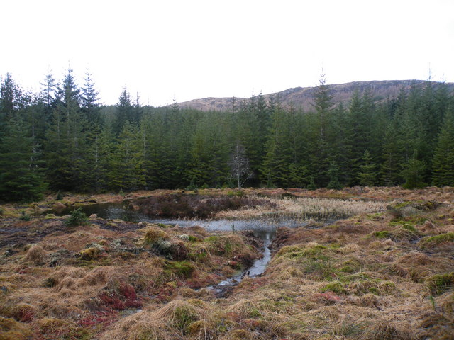 Drainage pond beside Ardochy Forest Track