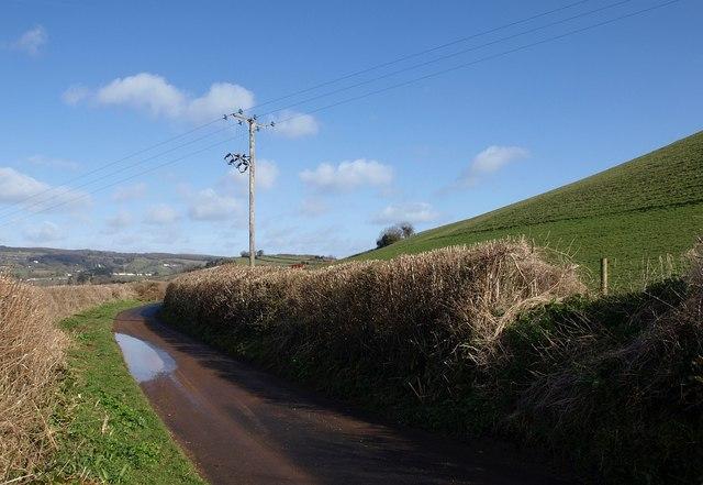Lane north of Pridhamsleigh