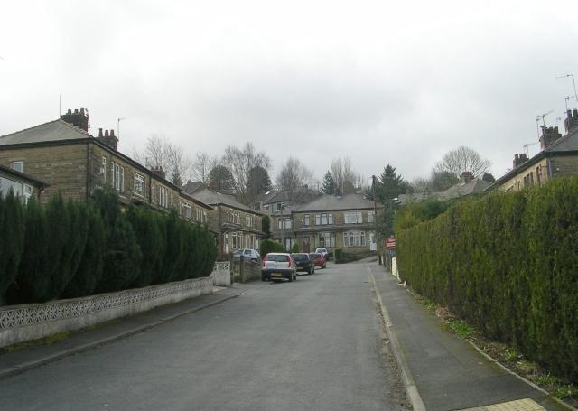 Ash Tree Grove - Moore Avenue