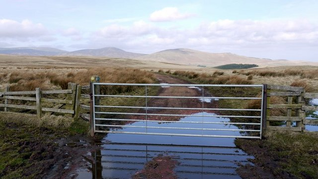 Gate on track to Chesters, west of Hart Law