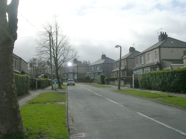 Lindley Drive - Poplar Grove