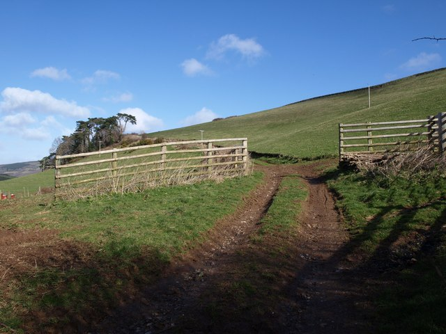 Track north of Pridhamsleigh
