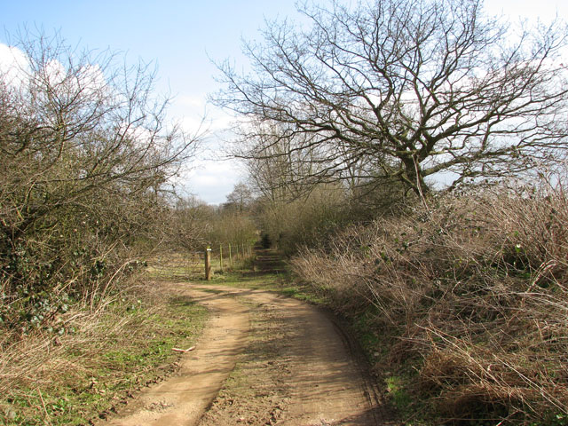 Straight on to Short-Thorn Road