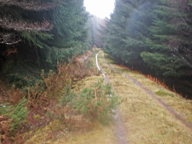 Ardochy Forest Track near Liath Dhoire